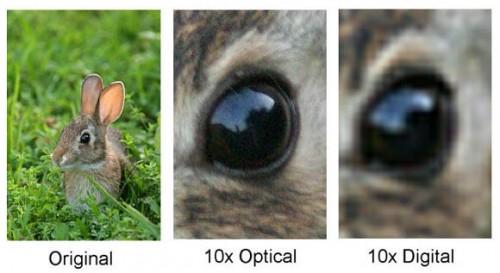 Оптический и цифровой зум