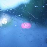 5 приемов при съемках в непогоду