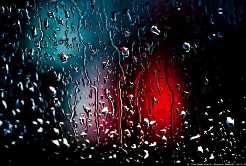 Фотографии под дождем