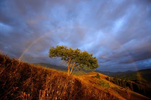 как снимать пейзаж с радугой