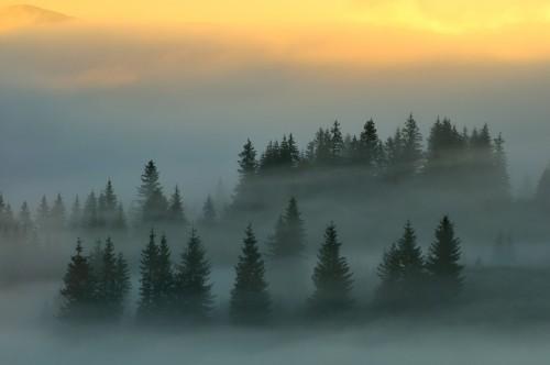 Как снимать пейзаж правильно