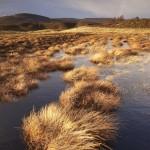 Пейзажная фотография: 5 способов, о которых вы вряд ли задумывались