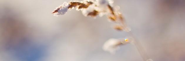 Как снимать снег